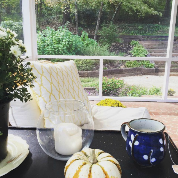 tea on the screen porch