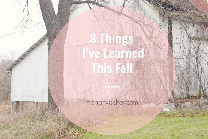 8-things-i-learned-fall